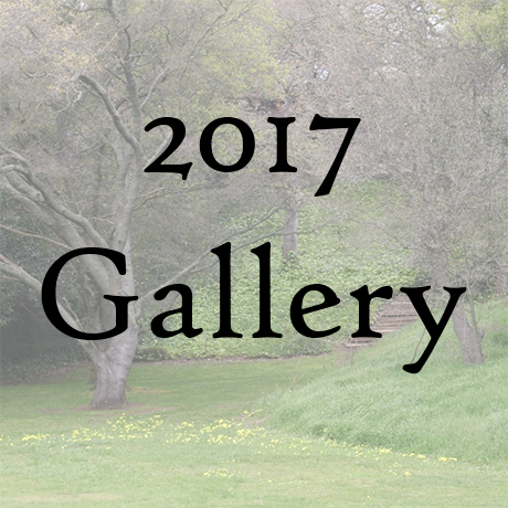 2017 Gallery